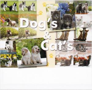 Dog&Cat 2019年カレンダー