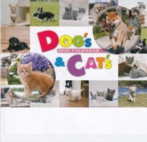 Dog&Cat 2020年カレンダー