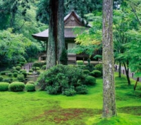画像:7月 三千院(京都) 日本の美 2020年カレンダー