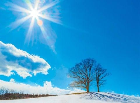 画像:2月 快晴の空と雪原 SORA - 空 -  2020年カレンダー