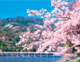 画像:4月 嵐山(京都) ザ・日本 2020年カレンダー