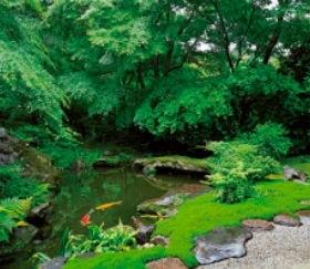 画像:5-6月写真 瑠璃光院(京都) 四季の庭 2020年カレンダー
