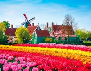 画像:3-4月 オランダ ヨーロッパ 2020年カレンダー