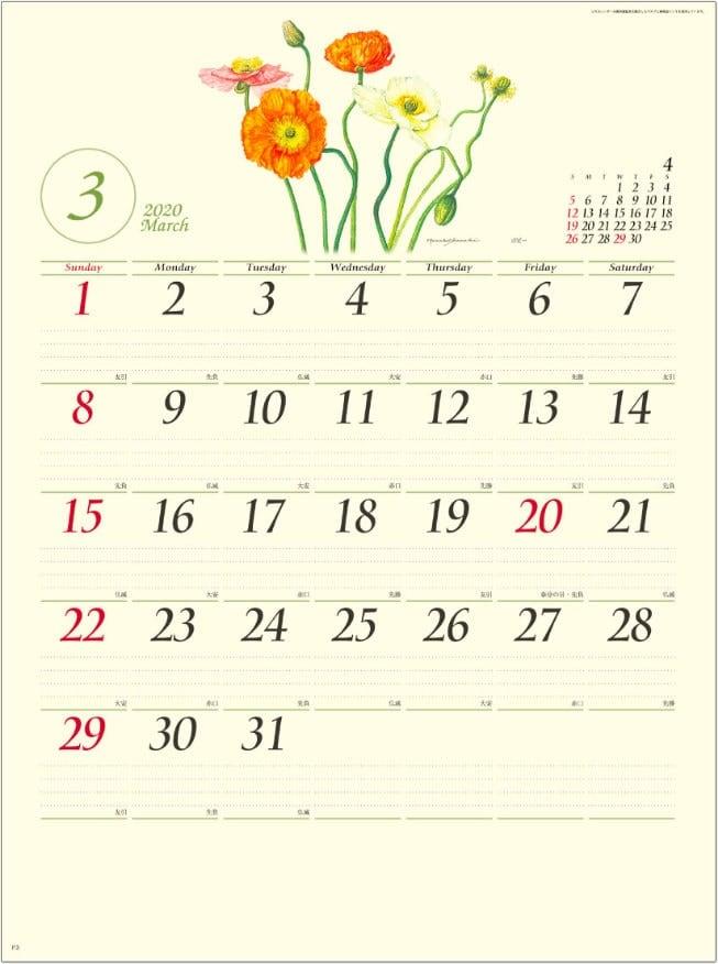 画像:ポピー ボタニカルアート 2020年カレンダー