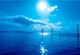 画像:3月 江川海岸(千葉) 輝く太陽 2020年カレンダー