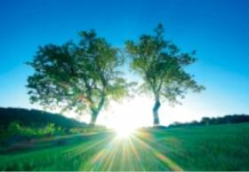 画像:6月 信州国際音楽村(長野) 輝く太陽 2020年カレンダー