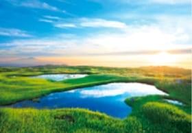画像:7月 弥陀ヶ原湿原(山形) 輝く太陽 2020年カレンダー
