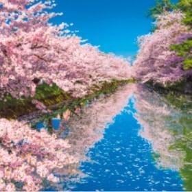 画像:3-4月 弘前公園(青森) 美しい水辺(フィルムカレンダー) 2020年カレンダー