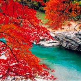 画像:9-10月 長瀞(埼玉) 美しい水辺(フィルムカレンダー) 2020年カレンダー