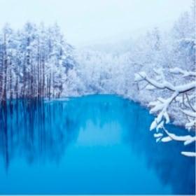 画像:11-12月 青い池(北海道) 美しい水辺(フィルムカレンダー) 2020年カレンダー