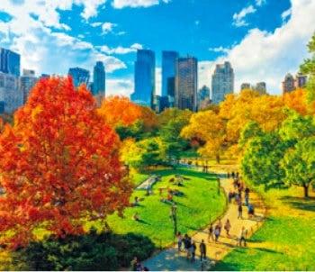 画像:9-10月 ニューヨーク(アメリカ) 世界の名勝(フィルムカレンダー・小) 2020年カレンダー
