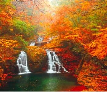 画像:9-10月 赤目四十八滝・荷担滝(三重) せせらぎの詩(フィルムカレンダー・小) 2020年カレンダー