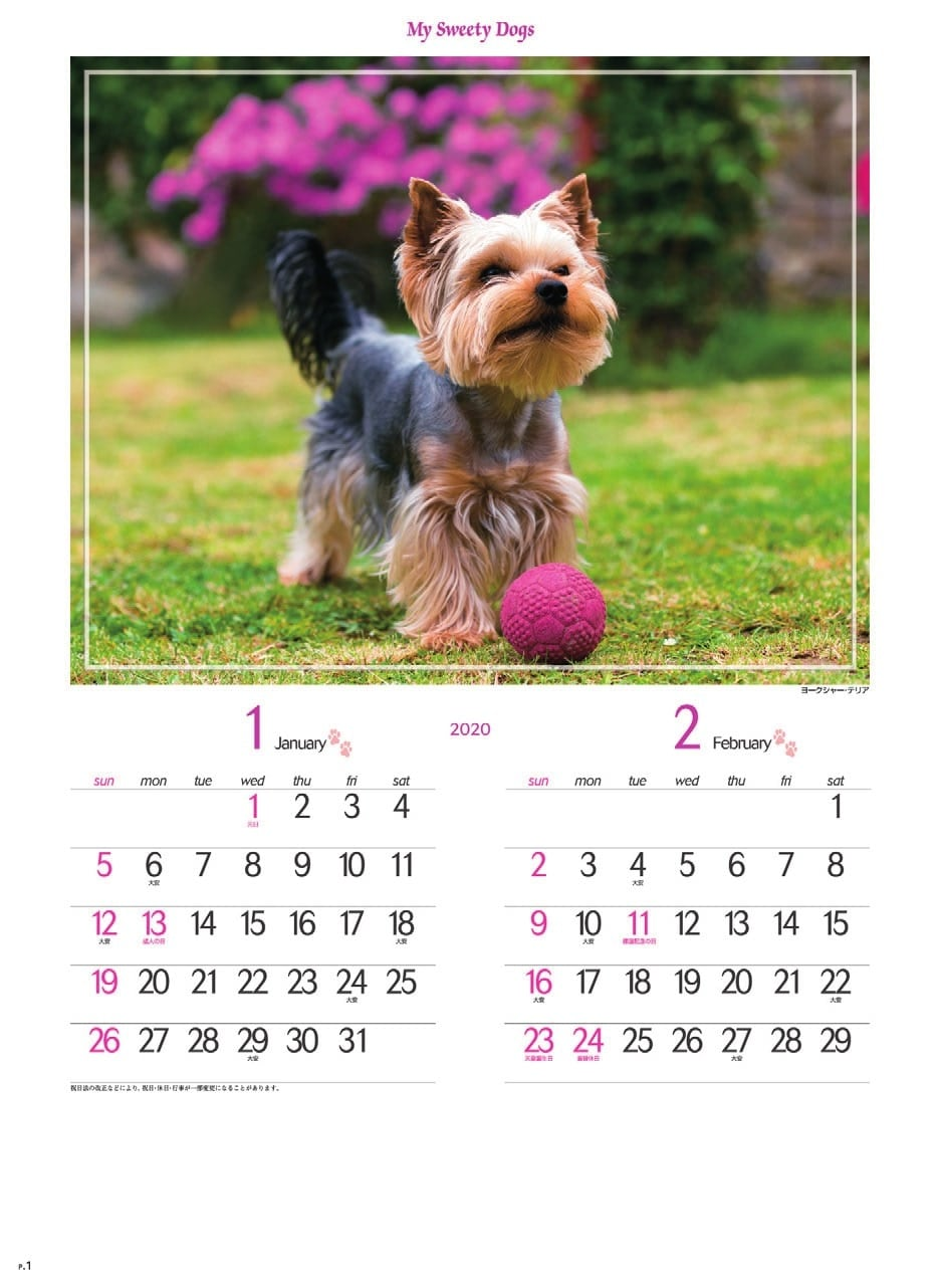 画像:ヨークシャー・テリア マイスウィーティードッグ 2020年カレンダー