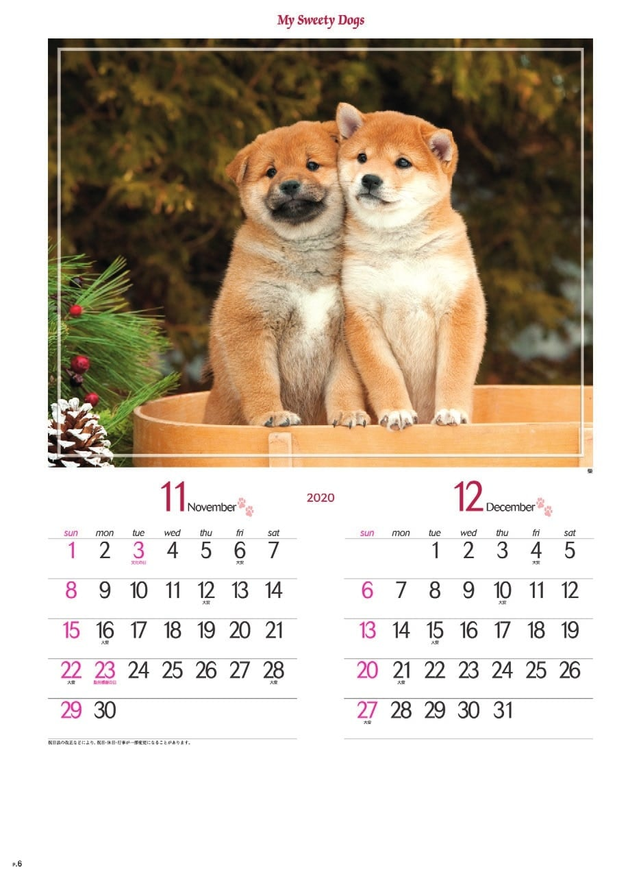画像:柴 マイスウィーティードッグ 2020年カレンダー