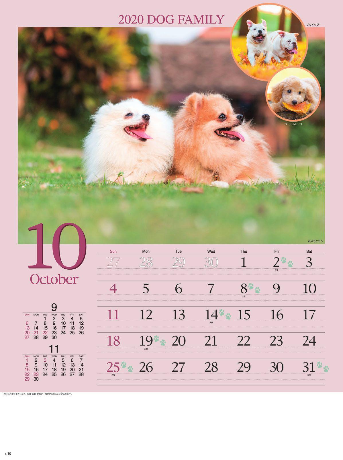 画像:ポメラニアン ドッグファミリー 2020年カレンダー