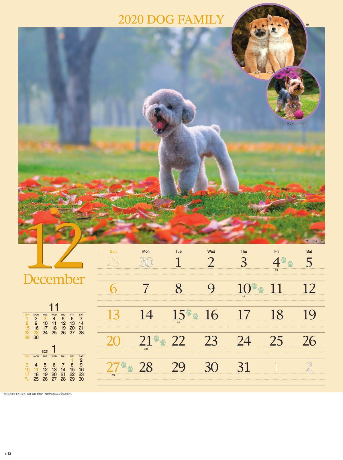 画像:プードル(トイ) ドッグファミリー 2020年カレンダー