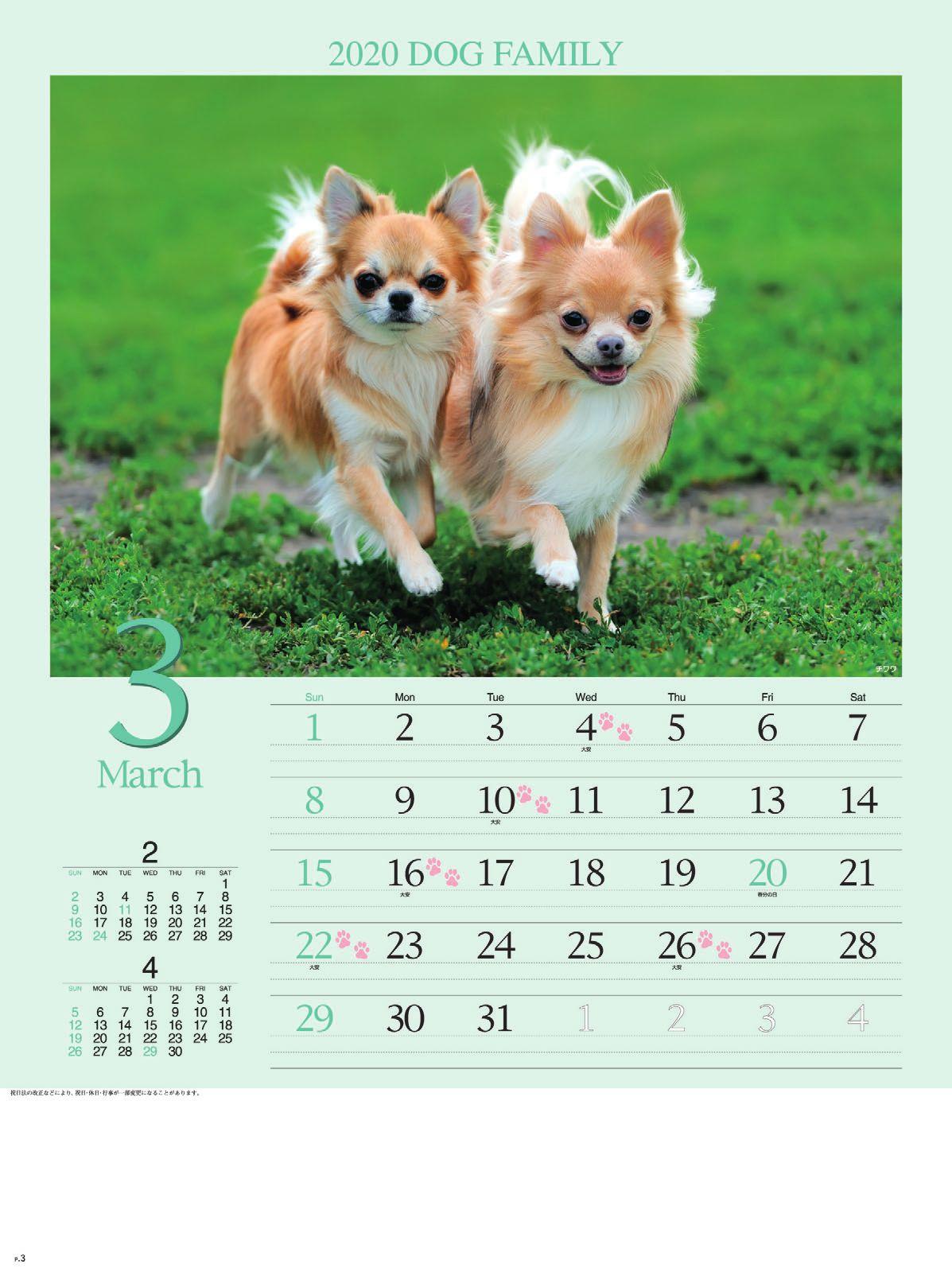 画像:チワワ ドッグファミリー 2020年カレンダー