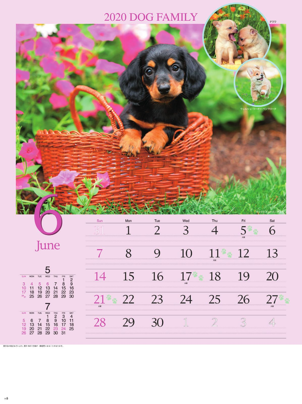 画像:ダックスフンド(ミニチュア) ドッグファミリー 2020年カレンダー