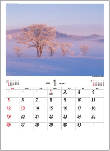 画像:旭に染まる雪原と霧氷の木立(北海道) 天地自然・森田敏隆写真集 2020年カレンダー