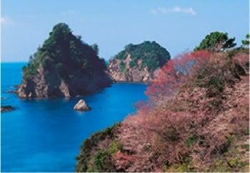 画像:3月 早春の堂ヶ島海岸・三四郎島(静岡) 天地自然・森田敏隆写真集 2020年カレンダー