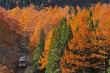 画像:11-12月 木次線(穴道~備後落合) 島根・広島 ローカル線紀行 2020年カレンダー