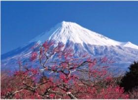 画像: 富士十二景 2020年カレンダー