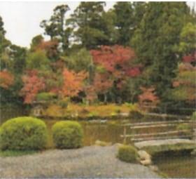 画像:11月 清涼寺(京都) 庭の詩情 2020年カレンダー