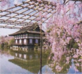 画像:4月 平安神宮(京都) 庭の詩情 2020年カレンダー