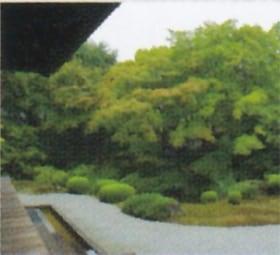 画像:9月 泉湧寺(京都) 庭の詩情 2020年カレンダー