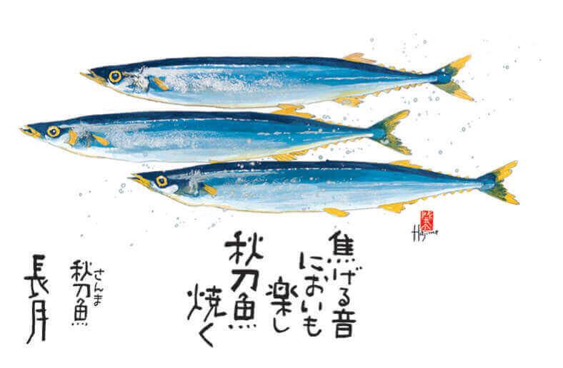 9月 サンマ 魚彩時記 -岡本肇- 2022年カレンダーの画像