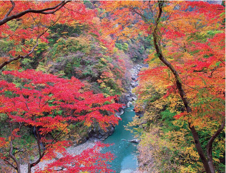10月 金蔵落としの渓流(埼玉) ザ・日本 2022年カレンダーの画像