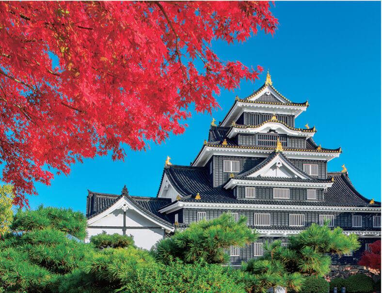 11月 岡山城(岡山) ザ・日本 2022年カレンダーの画像