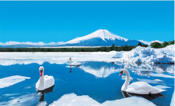 1月 山中湖村(山梨) フォーエバージャパン 2022年カレンダーの画像