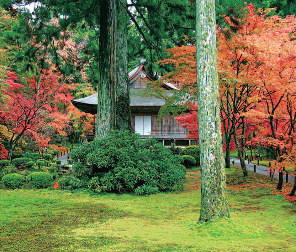 9-10月 三千院(京都) 四季の庭 2022年カレンダーの画像