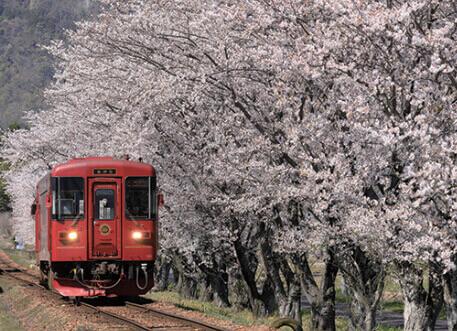 3-4月 長良川鉄道:美濃太田~北濃(岐阜) ローカル線紀行 2022年カレンダーの画像